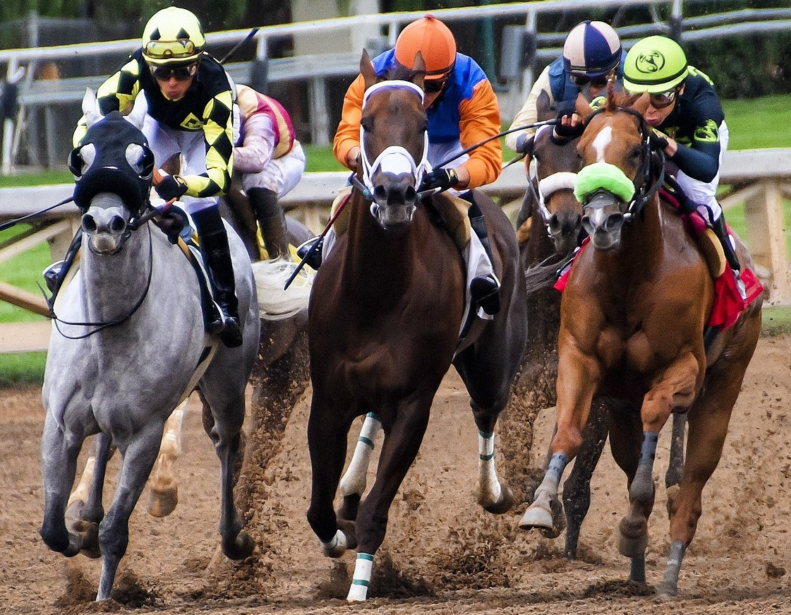 Horse Betting in Canada | Top Horse Betting Sites 2021
